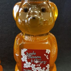 Large Honey Bear