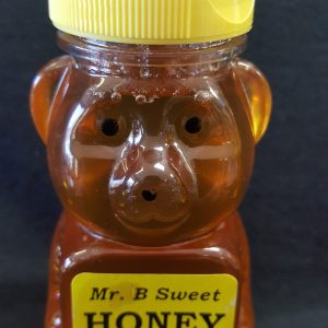 Medium Honey Bear