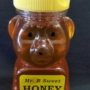 Medium Honey Bear